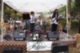 Festival music.jpg