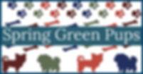 Spring Green Pups Logo.jpg