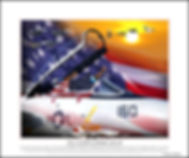 F-14 TOMCAT FAREWELL SALUTE.jpg