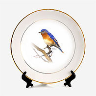 pitureplate-blue bird.jpg