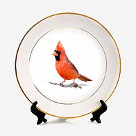 pitureplate-cardinal-1.jpg