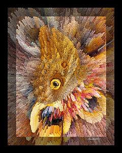 OWL BUTTERFLY-5.jpg