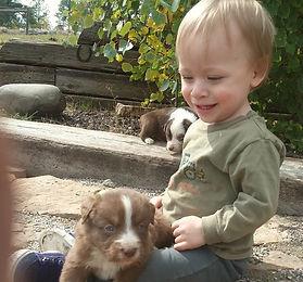 2017-10-3 puppies 073.jpg