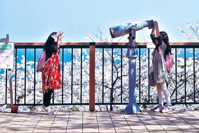 白野江植物公園.png