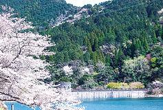 河内貯水池.jpg