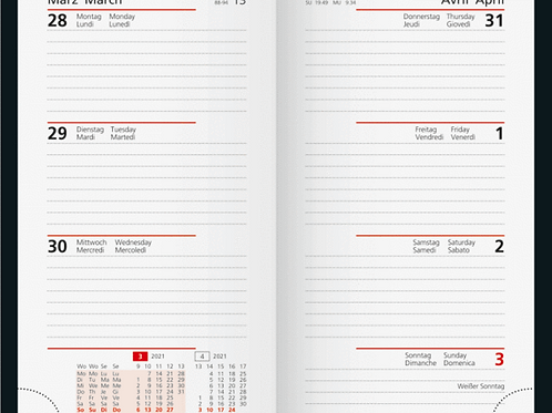 Rido Taschenplaner int 2022 8,7x15,3cm Modell 16911 - Kalender-Einlage
