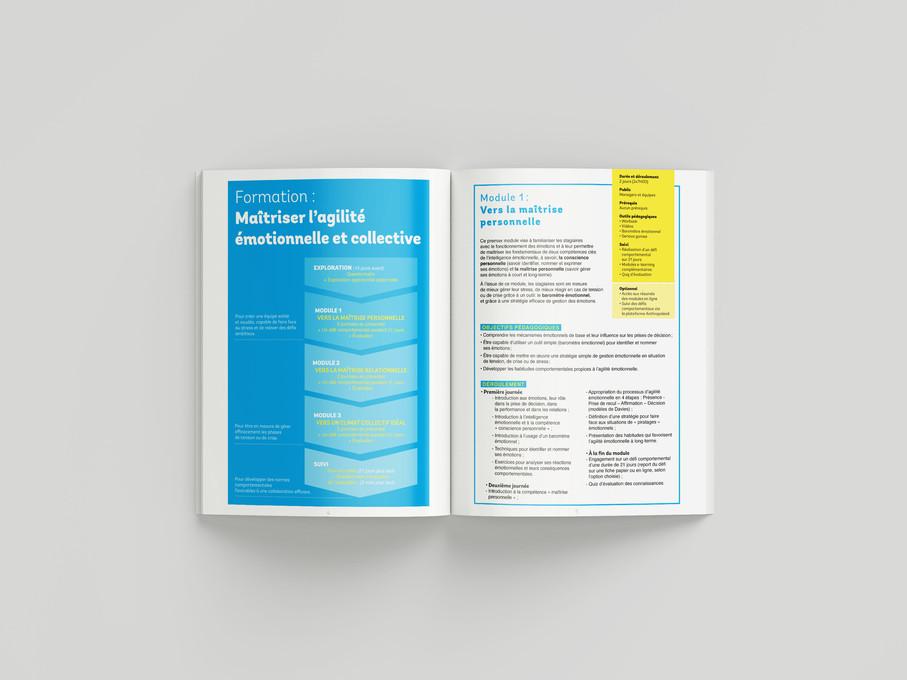 Brochure des formations
