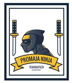 Promaja Ninja Neu