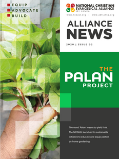 Alliance News 2020 | Issue 2
