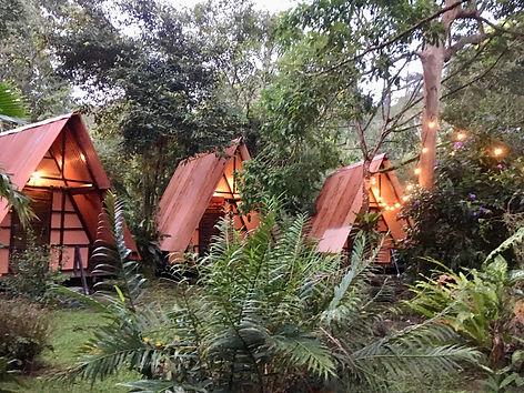Cabinas,Los Mineros Guesthouse,Hotel,Dos Brazos del Rio Tigre,Corcovado National Park,Costa Rica,Hostel