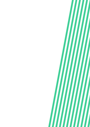 green%20lines%20on%20page_edited.png
