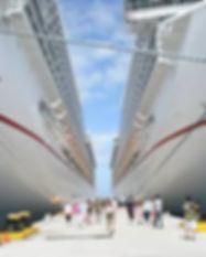 Travel Cruiser Agents.jpg