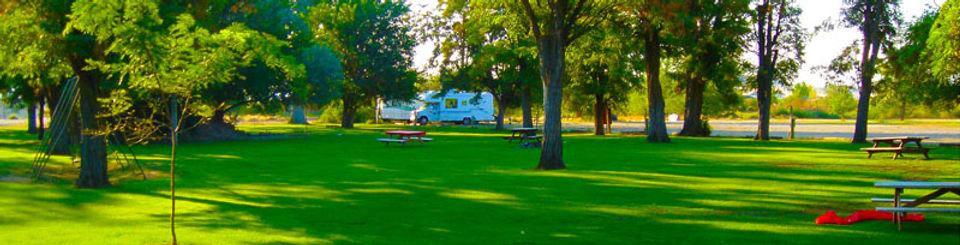 camping-header_0.jpg