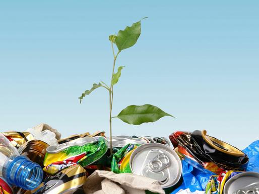 A Decomposição do lixo no meio ambiente.