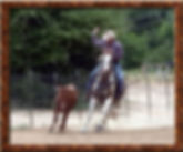 Roping lessons available at Circle D Ranch