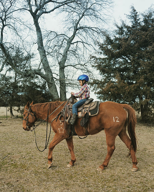 Zeke riding Big Al.jpeg