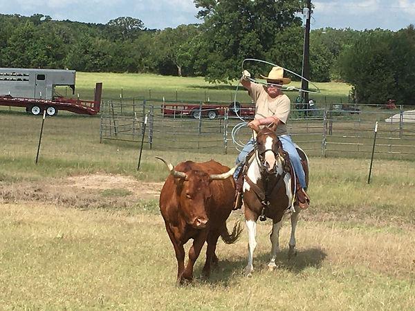 Gus roping at Circle D Ranch.jpg
