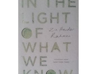 In the light of what we know / Zia Haider Rahman