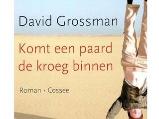 Komt een paard de kroeg binnen / David Grossman