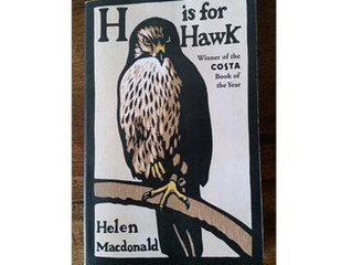 H is for Hawk / Helen Macdonald