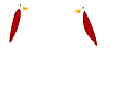 birds logo transparent-white.png