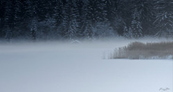 Lac noir by OCS
