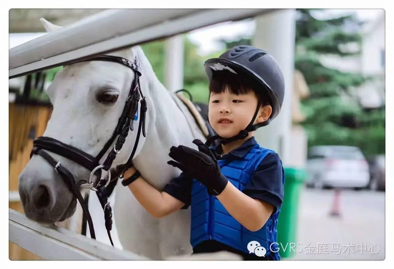 马宝萌娃惹人爱,幼儿园小马会11月上线!