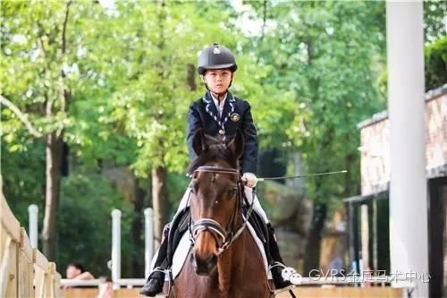 上海国际学校学生马术考级~ 荷兰皇家马协、教练、课程、认证!