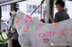 2019 Royal Dutch Riding Summer Camp