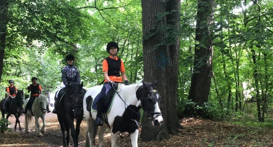 2020 Netherlands Riding Camp