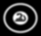 Ziyad logo circle.png