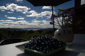 Outdoor dining set with fresh Tasmanian blueberry and view of ocean