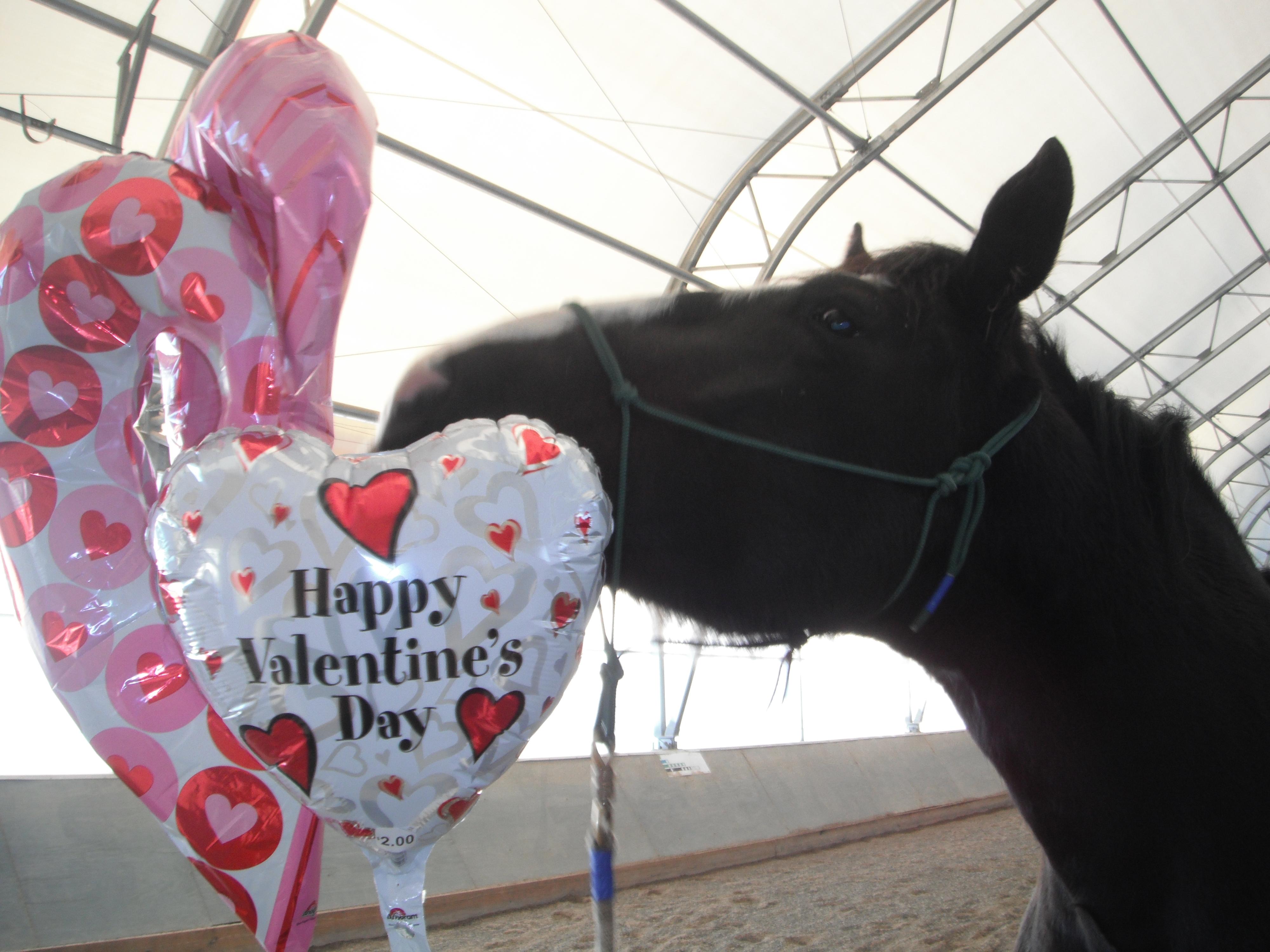Luna Valentine 011