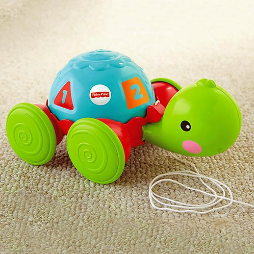 Fisher Price Tortuga de Aprendizaje