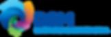 DSM_logo_logotype.png