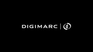 DigiMarc B2B Marketing Video