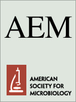 Paper accepted to AEM!