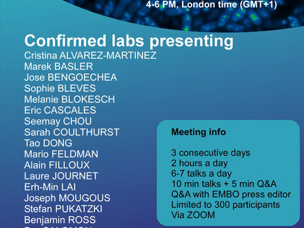 Dor, together with Mario Feldman from WashU, is organizing the first virtual T6SS conference!