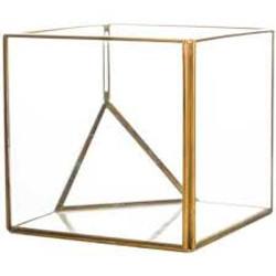 Square Gold Terrariums