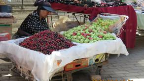 Tashkent Bazaar - Day 15