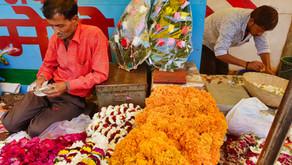 Jaipur - Day 10
