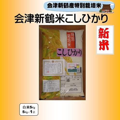 新米 特別栽培米 会津新鶴米こしひかり5kg
