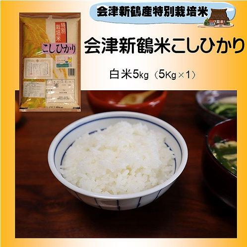令和2年産 特別栽培米 会津新鶴米こしひかり5kg