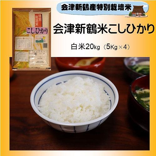 令和2年産 特別栽培米 会津新鶴米こしひかり20Kg(5Kg×4)