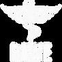 BAWE Logo White.webp