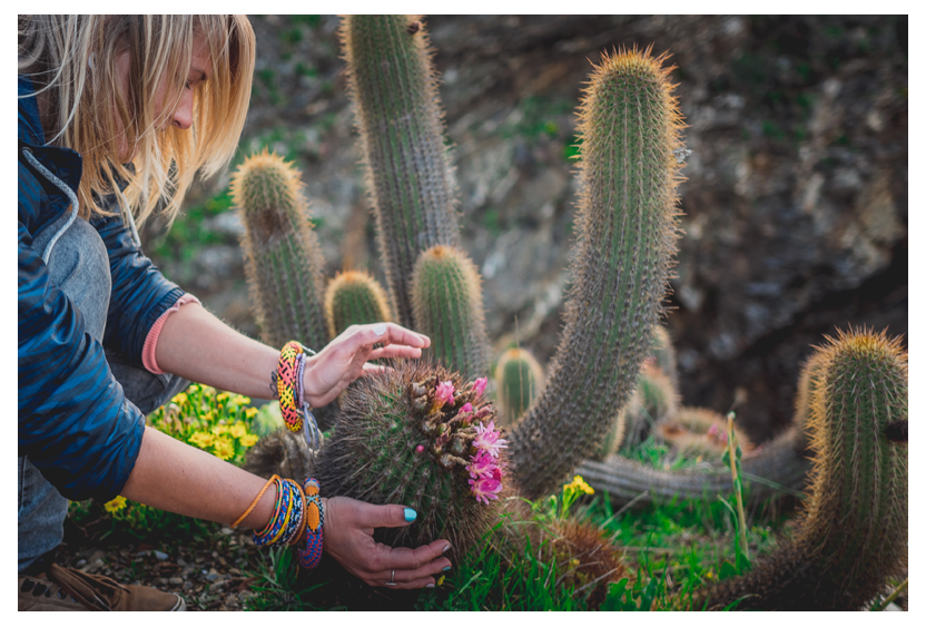 CACTUS FLOWER bracelets set
