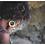 Thumbnail: JUNGLE earrings