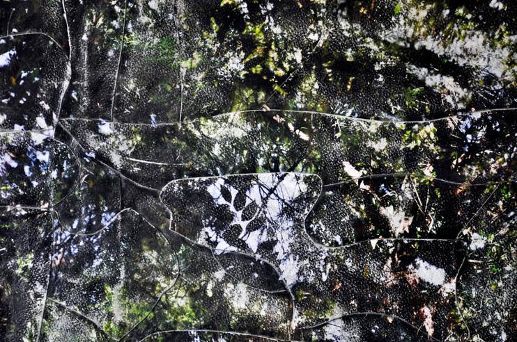 OutskirtsIII (Detail)