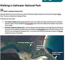 Saltwater walks screen shot.JPG
