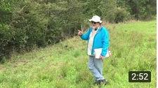 Peter herbicides.jpg